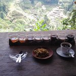 luwak coffee, samples of various teas and coffees with lovely rice field terrace view