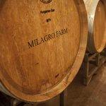 Milagro Farm Vineyads & Winery Barrels
