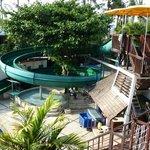 Caterpillar water slide