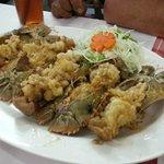 Moreton Bay bug (flathead lobster)