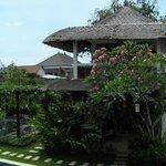 Villa surroundings