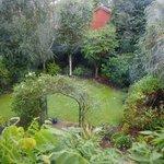 over looking garden from room