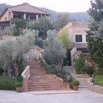 olivier et pierres