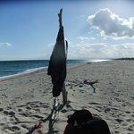 Privater Strand - kein Mensch weit und breit