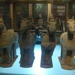 i cavalli di terracotta nel museo acquatico