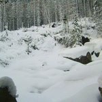 Las Cataratas en invierno ni se ven