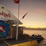 Sunrise over Sea Monkeys!