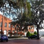 Across the road from the Hotel - Spanish moss in the trees above the cobbled streets