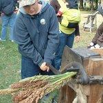harvesting prairie sugar weekend