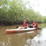 Kayaking in the virgin mangroves