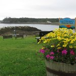 Town park at narrows and Lubec bay