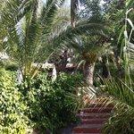 gardens @ Buenavista