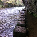 Stepping stones below the Monsdal trail allowing passage by the river