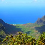View from the Pihea Trail