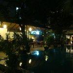 Garden & pool at night