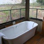 Bad mit Aussicht auf das Wasserloch
