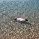 Snorkeling in clean, clear water