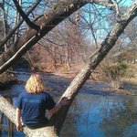 Sitting By the creek