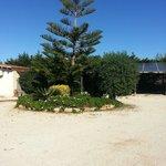 Photo de L'Araucaria case vacanza