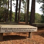 Beautifully inscribed benches (with the prayer of St. Francis) on Lake Joe