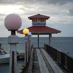 The dive dock/pier