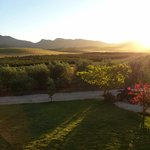 A view from the tasting room terrace