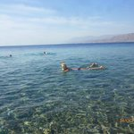 Пляж отеля с коралловыми рифами