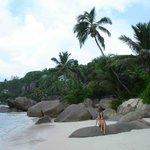 Часть пляжа при отеле
