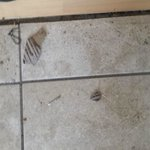 Screws and such at bottom of stairs - never cleaned up