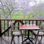 Balkon van onze lodge