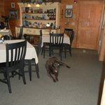 Bo and the Dining Room