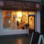 The Lily Rose