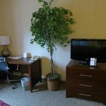 Desk, TV and interesting plant