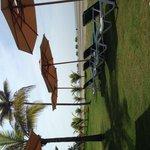 Área de playa con reposeras
