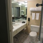 Marble sheethed, relatively small bathroom.