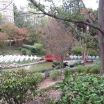 Wedding set up in the Japanese Garden area of the hotel