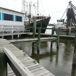 Shrimp boats that deliver their fresh catch