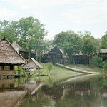 "Back towards ""Tahuayo Lodge"""