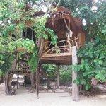 les cabanes sur la plage