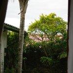 zicht vanuit de tuinkamer