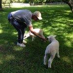 Jan with his lamb