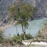 Elbow of Ravi river.