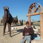 Clay Models of Camels outside Afrasiob Ruins