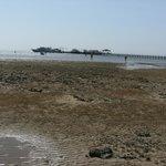 Beach at ebb