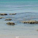 камни при отливе