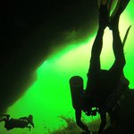 Diving in Carwash Cenote.