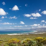 View of Walker Bay From Grootbos