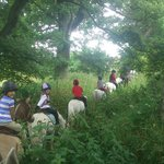 hacking at bank house equestrian