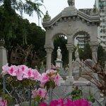 Cemetery in flowers