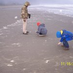 Finding sand dollars.